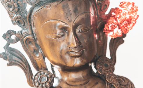 down time munku healing